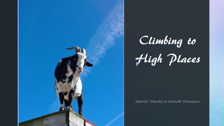 Climbing to Higher Places